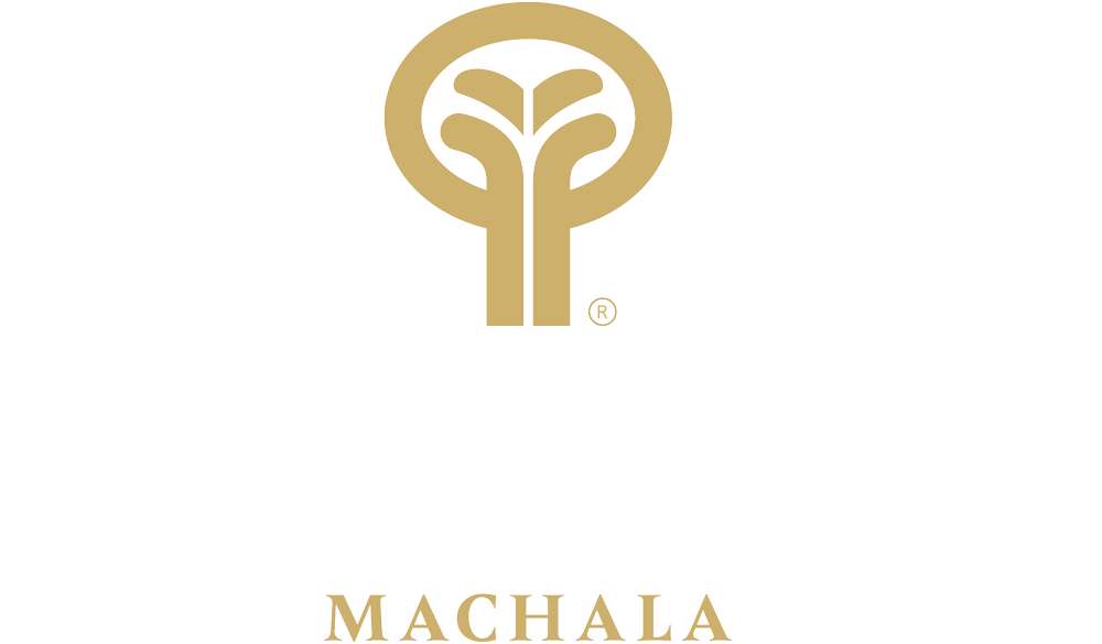 Oro Verde Machala Logo